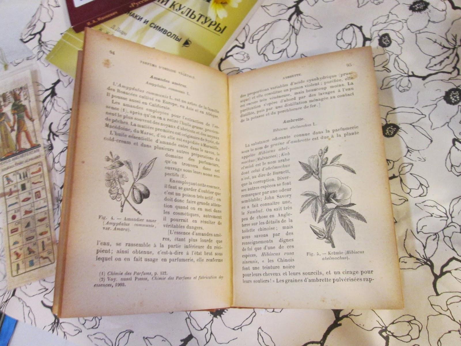 Антикварная книга по истории парфюмерии автора Септимуса Пьесса